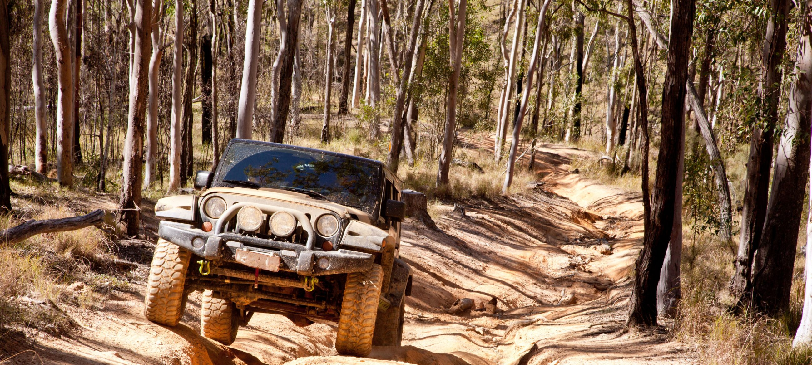 Home The 4wd Zone 1