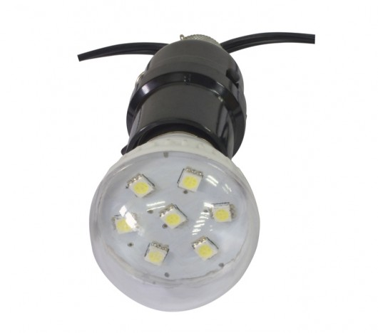 Firefly LED light kit